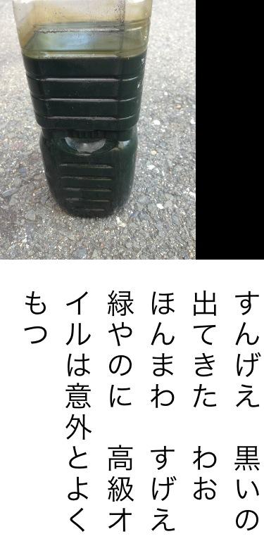 20130923_145713.JPG